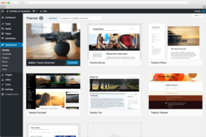 wordpress website development Sydney