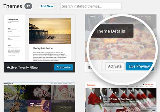 Wordpress preview feature
